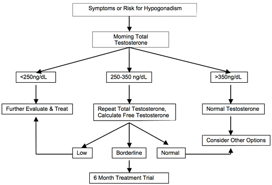 Figure 2. Drs. Terino and Khan decision pathways for testosterone replacement.